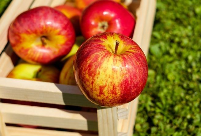 apple-1589874_960_720.jpg